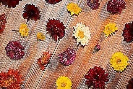Flowers Reklamní fotografie - 96651691