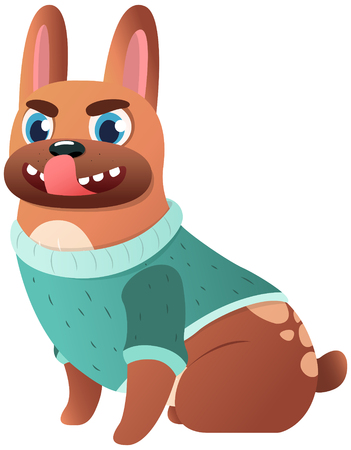 Sassy French Bulldog with sweater. Vector illustration