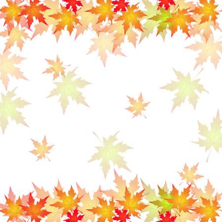 autumn leaves, background, illustration, vector,