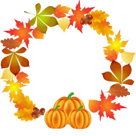 autumn leaves, pumpkin, circle background, illustration, vector,