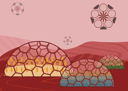 Closed ecological system. Concept of use. A self-sustainable biostation on another planet (Mars) with different plants: wheat, rice, algae