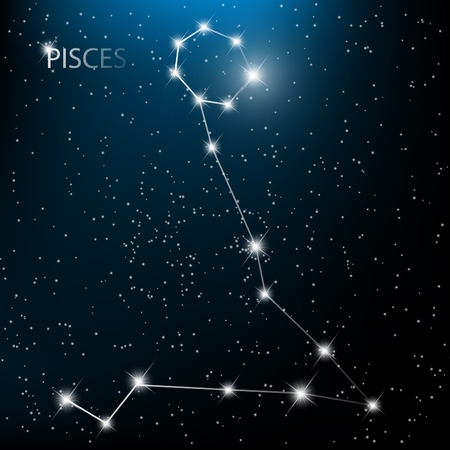 zodiacal: Pieces vector Zodiac sign bright stars in cosmos.