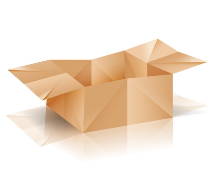 Origami paper box with reflection  Vector