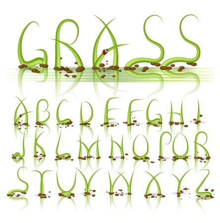 floral alphabet: Green grass alphabet with reflection
