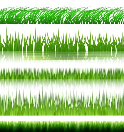 Grass set with reflection in water Stock Vector - 12711896
