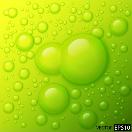 water drops on lime green background Stock Vector - 17249304