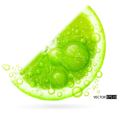 lime slice: Green lime with water splash isolated on white background   illustration