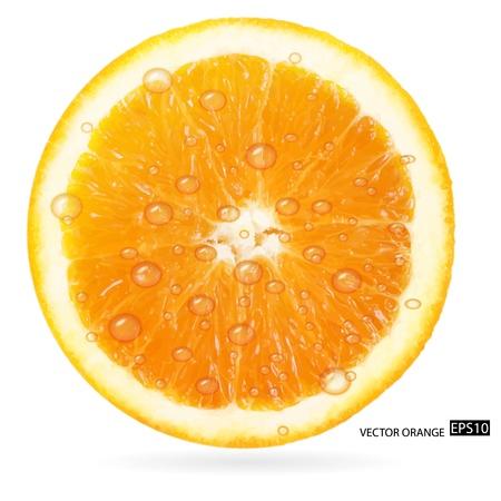 orange slice: Orange fruit with water drops isolated on white background  illustration Illustration