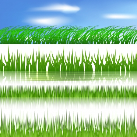 green grass border  Stock Vector - 17330878