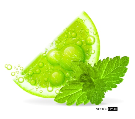 lime slice: Green lime with water splash and mint leaf isolated on white background