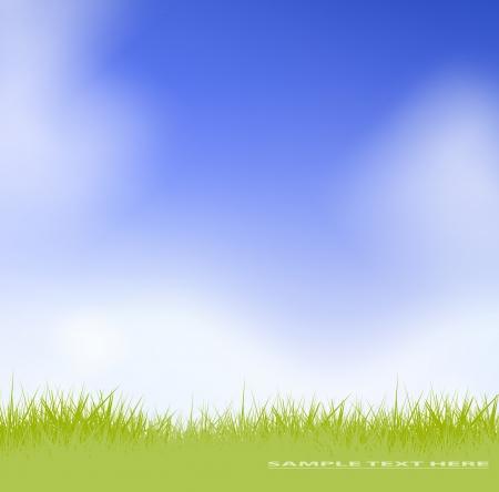 grass against blue sky  Stock Vector - 17558949