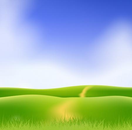 grass against blue sky  Stock Vector - 17558973