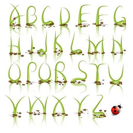 Green plant alphabet