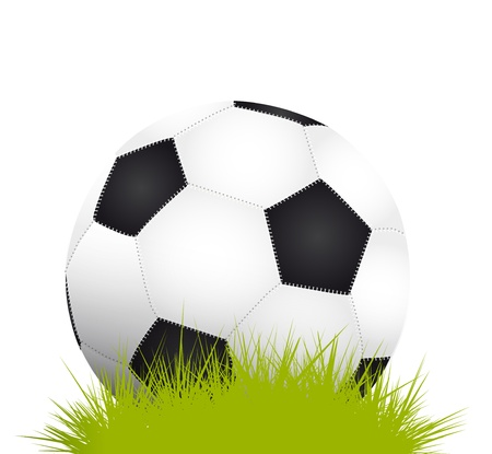 Soccer ball on grass  Stock Vector - 17711128
