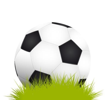 Soccer ball on grass Stock Vector - 17711128