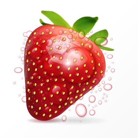 refreshments: Vector strawberry macro isolated on white  Illustration