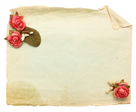 rose photo: Vintage background with old paper and flowers. Stock Photo