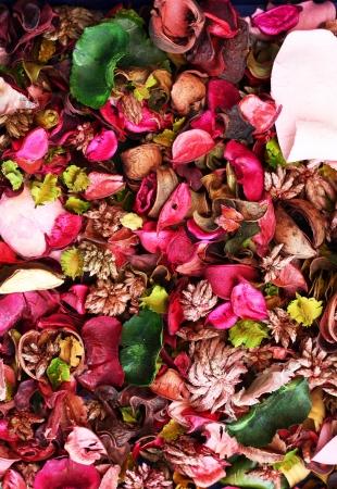 flores secas: Fondo secado de flores.