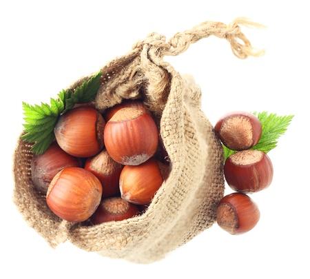 Hazelnuts in sack isolated photo