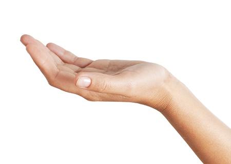 Hand holding isolated on white background  Stock Photo - 20068199