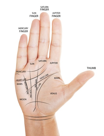 psychic: Woman hand with palm reading map isolated on white background