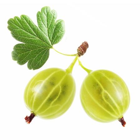 grosella: Dos grosellas con hojas aisladas en blanco
