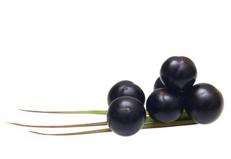 acai: Amazon acai fruit with palm leaves isolated on white background.
