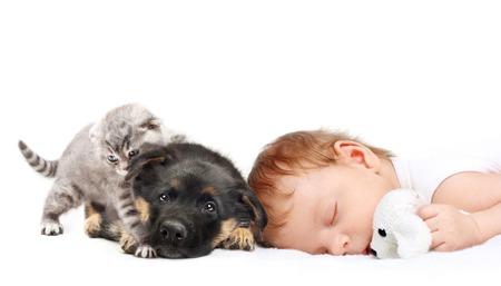 Schlafendes Baby mit Spielzeughund, Welpen und K�tzchen