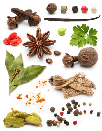 Different spices and herbs isolated on white background photo