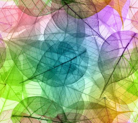 Macro leaves seamless background 版權商用圖片