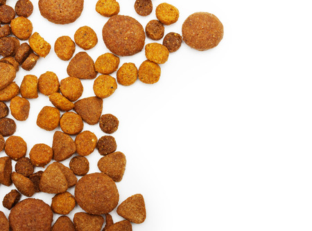 Dry food for dog and cat isolated on white background. photo