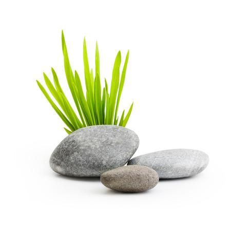 thalasso: Pierres avec de l'herbe isolé sur fond blanc.