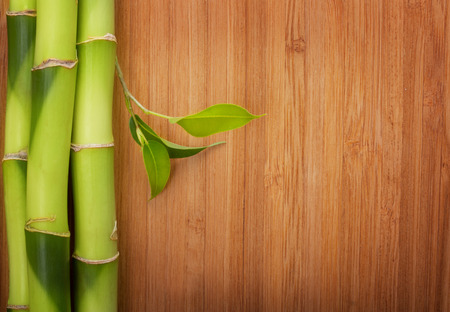 Bamboo frame made of stems on wood background.