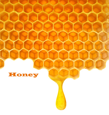 Honey macro in comb texture pattern background. Stock Photo
