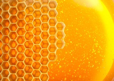 honey comb: Honey macro in comb texture pattern background. Stock Photo