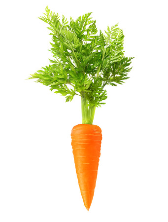 Carrot isolated on white background Foto de archivo