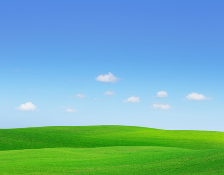 horizon over land: Green hills. Summer landscape with green grass and blue sky. Stock Photo