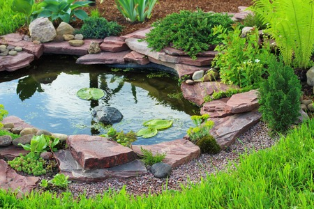 pond: Pond in landscape design.
