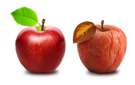 wrinkled: Wrinkled and fresh apple isolated on white background. Aging concept.