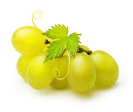 白い背景に分離された緑のブドウ。