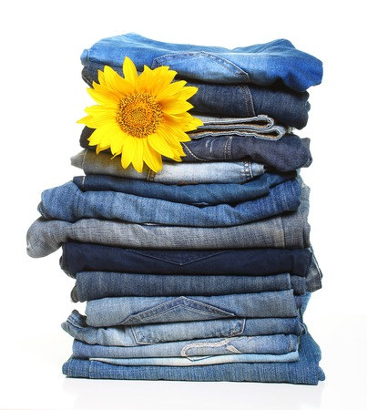 slacks: Pile of blue jeans and sunflower isolated on white. Stock Photo