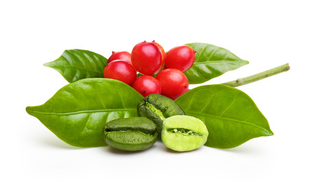 grano de cafe: los granos de café verdes con hojas aisladas sobre fondo blanco. Foto de archivo