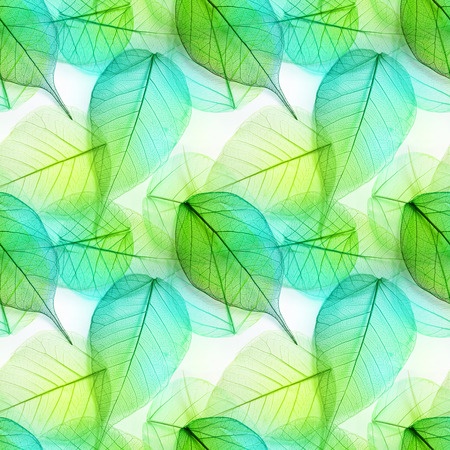 green texture: Macro green leaves seamless background texture, pattern