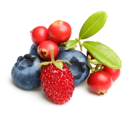 forest products: Forest wild berry cowberry, strawberry and blueberry with leaves isolated.