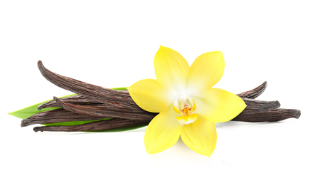 Vanilla pods and orchid flower isolated on white background 版權商用圖片 - 61200929