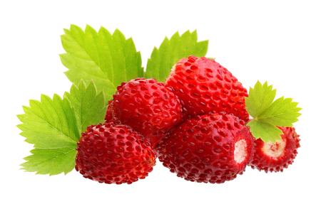 strawberry plant: Wild strawberry macro isolated on white Stock Photo