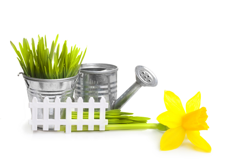 Gardening tools, grass and flowers isolated on white background
