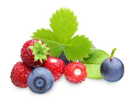 'wild strawberry: Wild strawberry and blueberry macro isolated on white Stock Photo