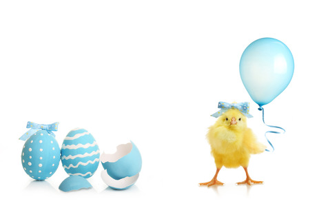 Easter colorful eggs and cute little chicken with balloon isolated on white background