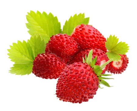 Wild strawberry macro isolated on white 免版税图像